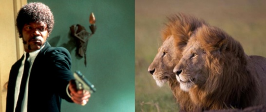Samuel L Jackson saves lions by shooting African Cats by