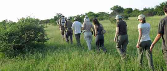 Greater Kruger Klaserie bush walk  by