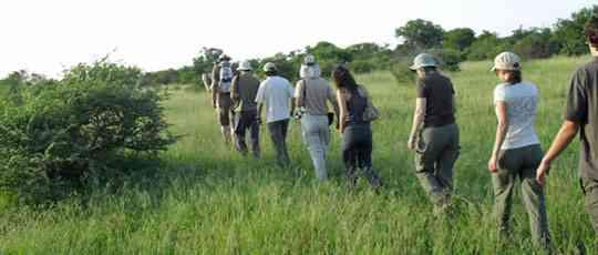 Greater Kruger Klaserie bush walk  by