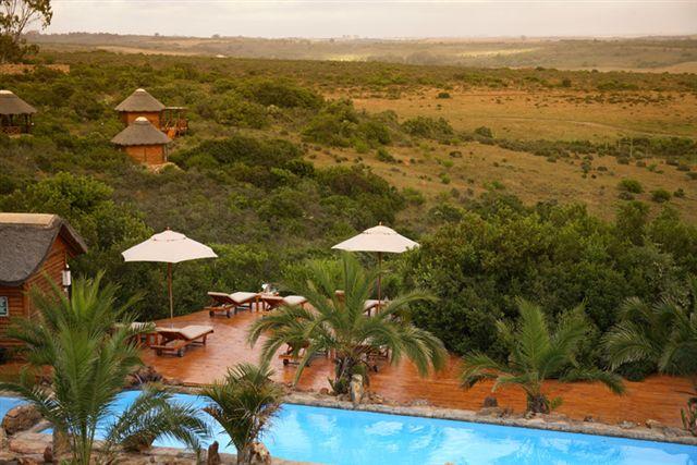 Cape Town Safaris Big 5 Game Reserves Near Cape Town African Budget Safaris