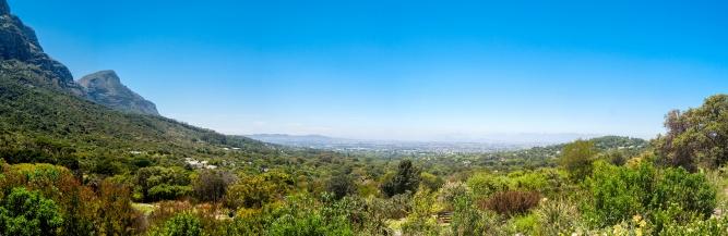 Kirstenbosch Panorama by Meraj Chhaya