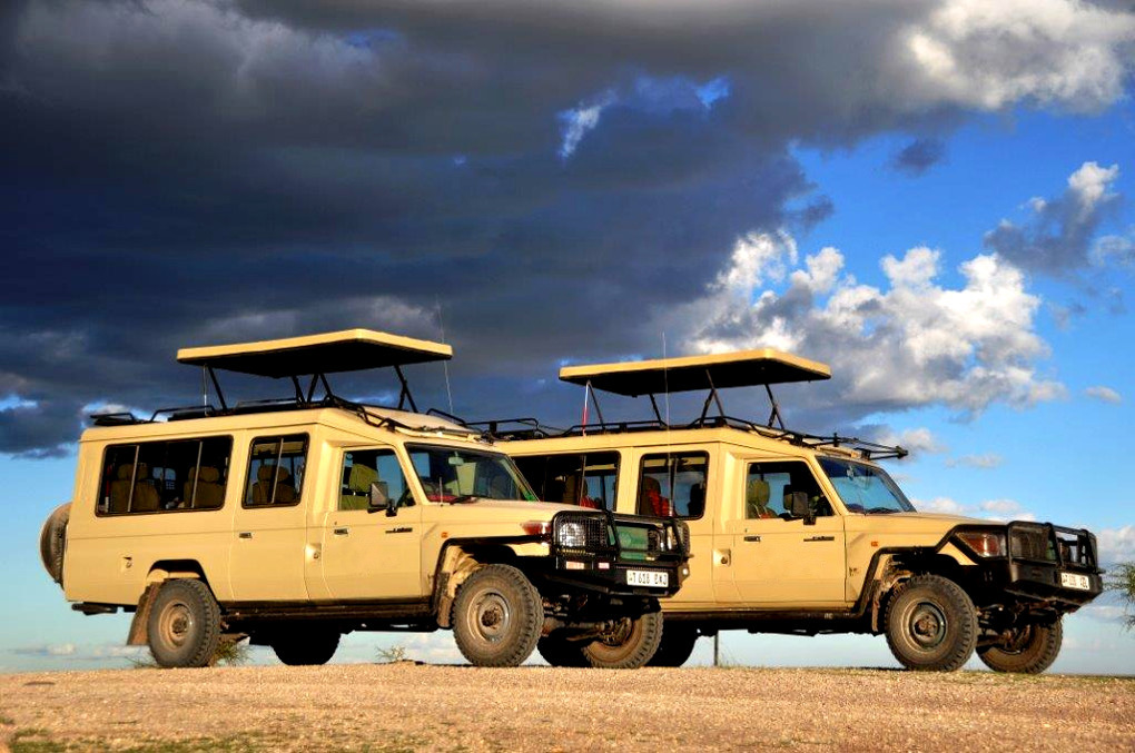 African Budget Safari supplier