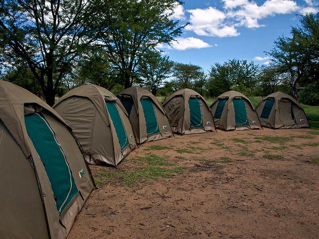 Safari Accommodation 101