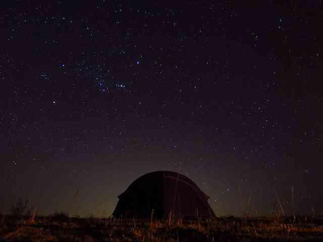 Starlight Camping by Weldon Kennedy