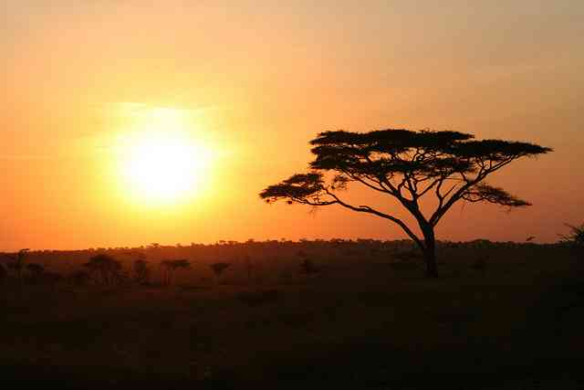 African Sunset by Rob & Dani