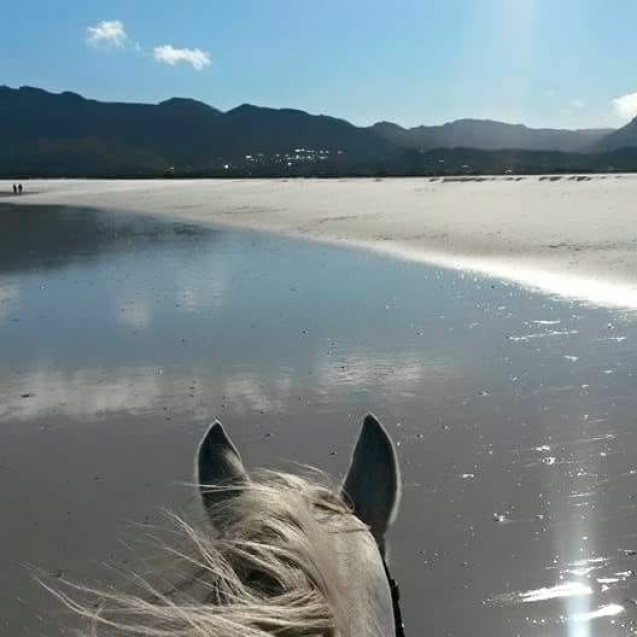 Imhoff Equestrian Centre