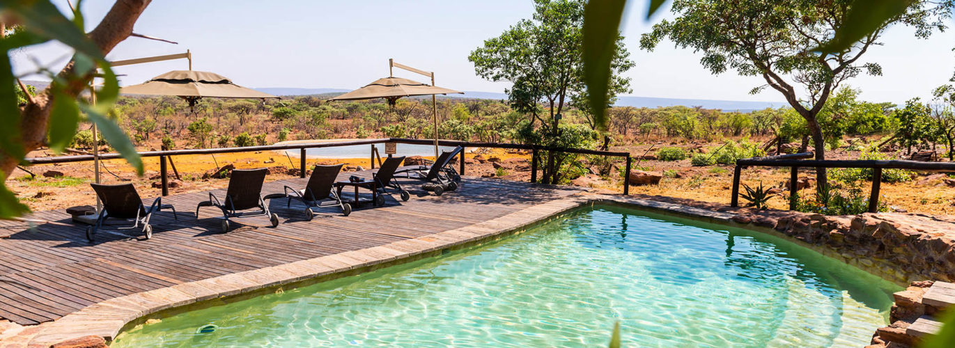Best Johannesburg Safaris Big 5 Game Reserves Near